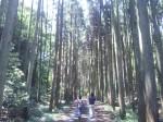 韓竃神社  (からかまじんじゃ)